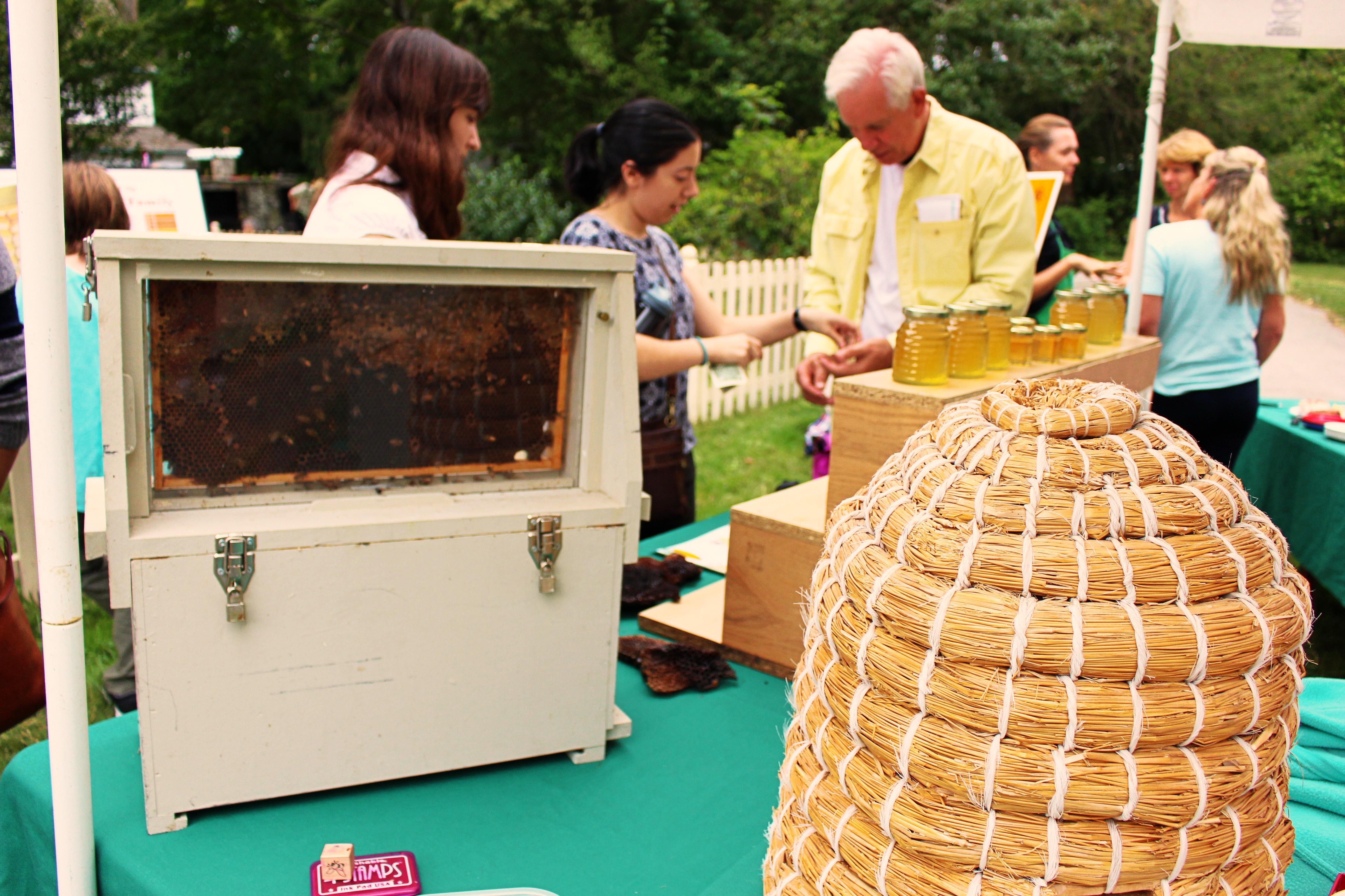 Beekeeping Demonstration/ H. Novak